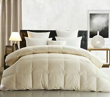 SNOWMAN GOOSE DOWN Comforter King Size, Ivory Color, 600TC,800 Fill Power