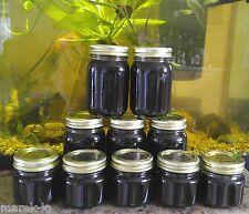 Farm Fresh Homemade SHAGBARK HICKORY SYRUP from Tennessee Appalachia HALF PINT