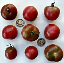 Brandywine, Black - Organic Heirloom Tomato Seeds - Super Slicer - 40 Seeds
