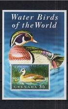 Grenada 1995 MNH MS, Water Birds, Egyptian Goose (R8n)