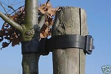 100 x Tree Ties - Buckles - Straps 60cm Length (e321)