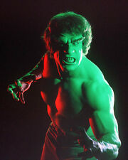 Lou Ferrigno UNSIGNED photo - H8099 - The Incredible Hulk