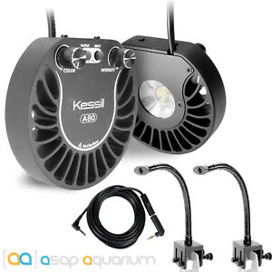 2x Kessil A80 Tuna Sun LED Lights & 2x Mini Goosenecks & Link Cable Bundle