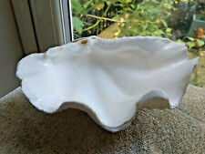 More details for half clam shell white natural shell bathroom decorative 20 cm x 15 cm