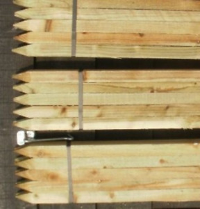 20 x 1.2m 4ft tall square garden tree stakes - HC4 pressure treated