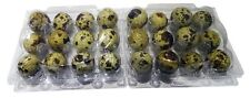 Quail Egg Boxes| clear plastic| to hold 12 eggs| pack 100