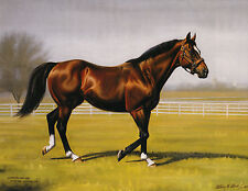 Northern Dancer photo from oil painting  Horse Racing