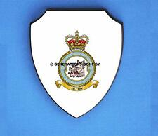 ROYAL AIR FORCE 501 COUNTY OF GLOUCESTER SQUADRON WALL SHIELD (FULL COLOUR)