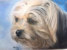"""Original pastel painting of adorable Terrier. 9x12"""" image on Pastel paper"""