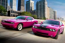 "Dodge Power Pink Muscle Cars Poster 24""x 16"""