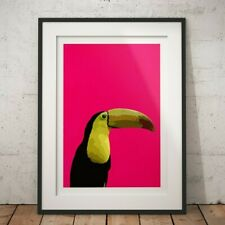 TOUCAN TROPICAL BIRD POP ART COLOURFUL INTERIOR DECO PINK PRINT POSTER A1 A2 A3
