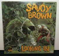SAVOY BROWN LOOKING IN (NM) PAS-71042 LP VINYL RECORD