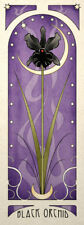 Gothic Nouveau Wall Art Poster Print The Black Orchid