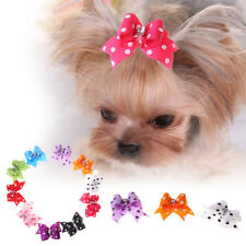 10x Small Pet Beauty Bow Tie Dog Cat Hair Clip Hairpin Puppy Grooming Accessory