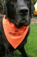 HALLOWEEN DOG BANDANA SLIDE ON COLLAR TRICK OR TREAT ORANGE POLYCOTTON