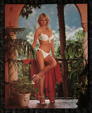 "Excellent 1960's Bombshell ""Tropical Beauty""  8"" X 10"" Pin Up Calendar Top"