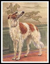 BORZOI LOVELY IMAGE VINTAGE STYLE DOG PRINT POSTER