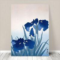 "Beautiful Japanese Floral Art ~ CANVAS PRINT 8x10"" ~ Iris Flowers Koson"