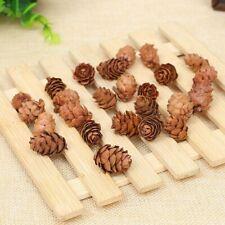 10Pcs Mini Pine Cones Acorns Dried Flowers Christmas Decor Ornaments au
