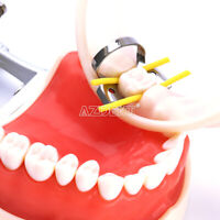 Dental Rubber Dam Stabilizing Cord Medium Wedges Clamps Sheets Elastic Medium