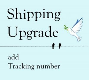 Shipping Upgrade to First Class Package with Tracking number