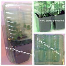 25 Stk. Pflanzenverpackungen für den Versandhandel, Pflanzenverpackung, Versand,