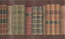 Library Books on the Shelf Wallpaper Border MN5020
