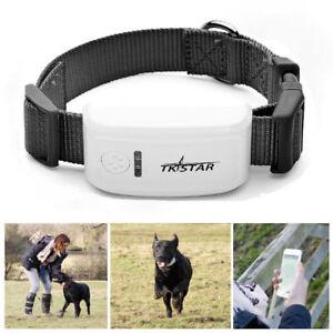 Real Time Mini Pet Dog Cat  GPS GSM Tracker Collar Locator Tracking Anti-lost