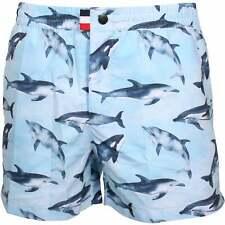 Franks Flipper Print Men's Swim Shorts, Sky Blue