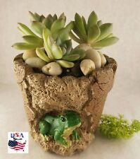 Succulent Plant Flower Clay Pots