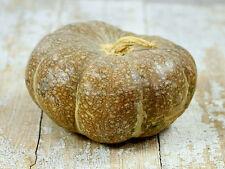 Pumpkin STRAWBERRY CROWN-Pumpkin Seeds-RARE BRAZILIAN HEIRLOOM-12 SEEDS