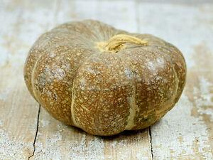 Pumpkin STRAWBERRY CROWN-Pumpkin Seeds-RICH & SMOOTH TASTING HEIRLOOM-10 SEEDS