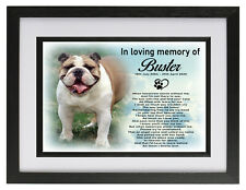 Bull dog/pet Personalised memorial photo frame cremation urn keepsake for ashes
