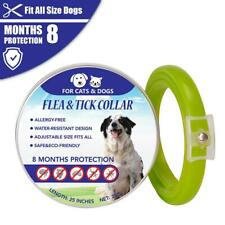 Flea Neck Collar Dog Flea Tick Over 18 Lbs 8 Month Protection In Vitro Deworming
