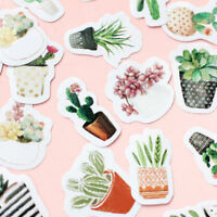 45pcs Cute Cactus Plants Paper Stickers Label DIY Scrapbook Diary Album Decor