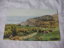 ARQ019 - PATH TO THE LANDSLIP SHANKLIN Isle of Wight A R Quinton #1631 POSTCARD