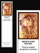 Irish Water Spaniel Dog Laminated Bookmark - Print from Original Art