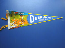 1970's Deer Acres Large Pennant, Pinconning, Michigan