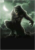 Werewolf Classic Movie Large Poster Art Print Maxi A1 A2 A3 A4