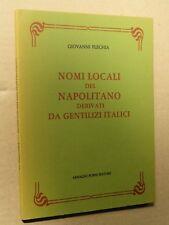 NOMI LOCALI DEL NAPOLITANO DERIVATI DA GENTILIZI ITALICI Giovanni Flechia Forni