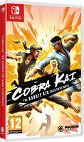Cobra Kai The Karate Saga Continues Nintendo Switch Game