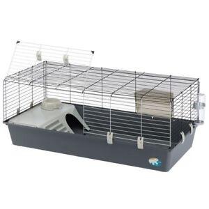 Ferplast Rabbit & Guinea Pig Cage 120 is a spacious cage Dwarf Rabbit