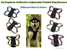 No Tag-Different Color & Sizes-Coastal K9 Explorer Reflective Adjust Dog Harness
