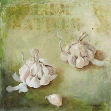 Maritta Haggenmacher: Allium Sativum Fertig-Bild 30x30 Wandbild Küche Gemüse