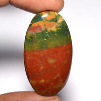 Cts. 51.60 Natural Designer Bloodstone Cabochon Oval Cab Loose Gemstone