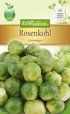 Choux de Bruxelles 'Groninger' - Brassique Oleracea, Kohl Env. 120 Graines 4033