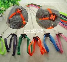 Parrot Bird pigeons Harness & Leash Anti-bite Adjustable Multicolor 2PCS/LOT