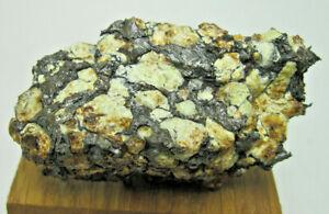 Meteorite SERICHO PALLASSITE.  EXRARE!!! . 61.99 Grams