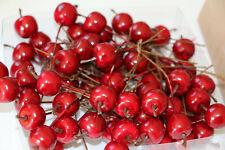 30 Stück Deko Äpfel rot am Draht Kränze Herbstdeko Gestecke Floristik Dekoäpfel