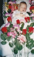2000's color Vintage photo homemade funeral baby in coffin post mortem